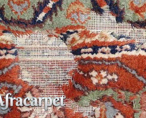 درچه نوع فرش هایی پوسیدگی رخ میدهد؟