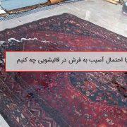 قالیشویی و احتمال آسیب به فرش