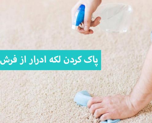 پاک کردن لکه ادرار از فرش